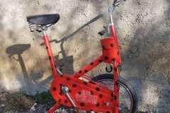 Vélo coccinelle